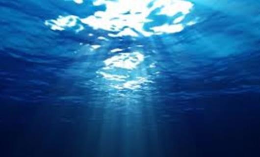 Φωτογραφίες για την Παγκόσμια Ημέρα Ωκεανών από την Greenpeace